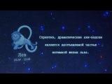 СЕКСУАЛЬНЫЙ ГОРОСКОП. ЛЕВ